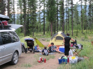 Larch camp